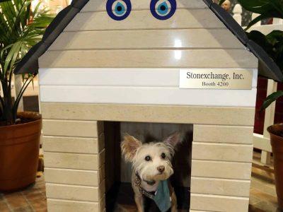 COV17-doghouse-StoneExchange